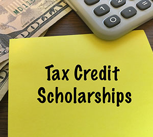 Business Tax Credit Scholarship